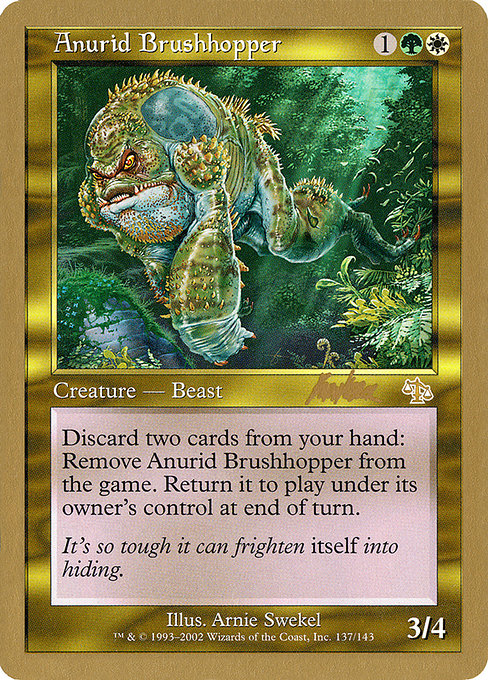 Anurid Brushhopper