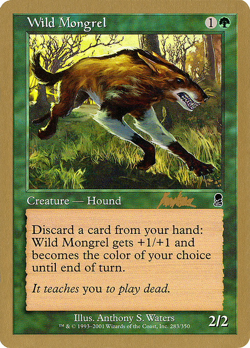 Wild Mongrel