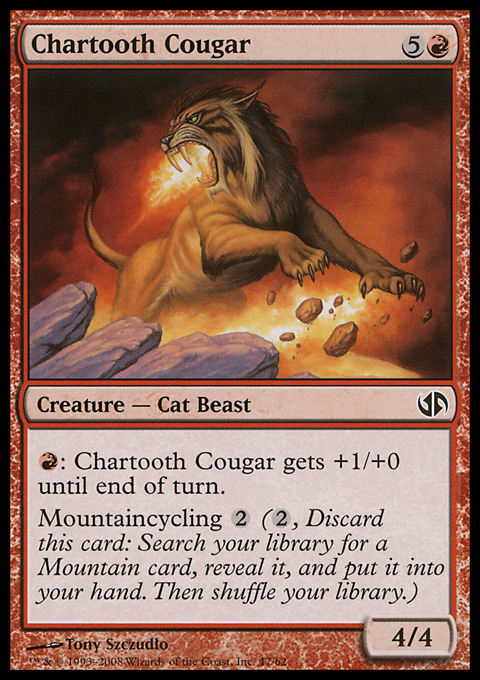 Chartooth Cougar